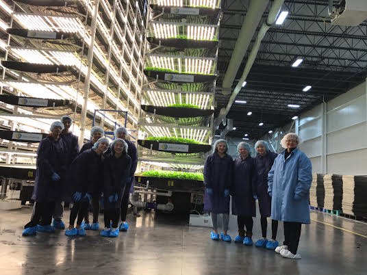 MLHS entrepreneur students seen visiting AeroFarms in Newark, NJ.